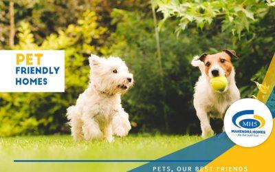 Pets, Our Best Friends!